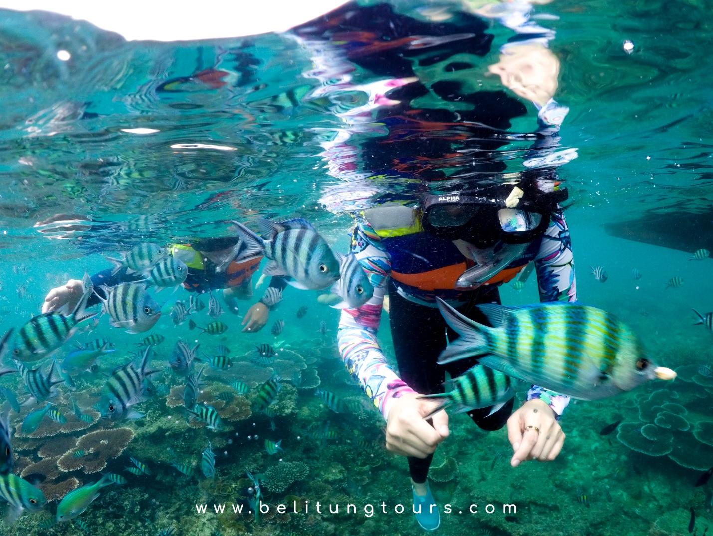 Tips Travel Belitung, Tour Belitung Untuk Pelancong